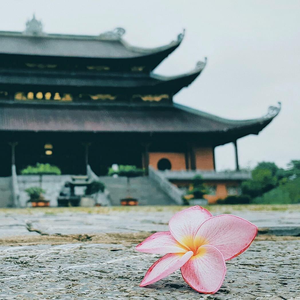 bai dinh pagoda ninh binh vietnam