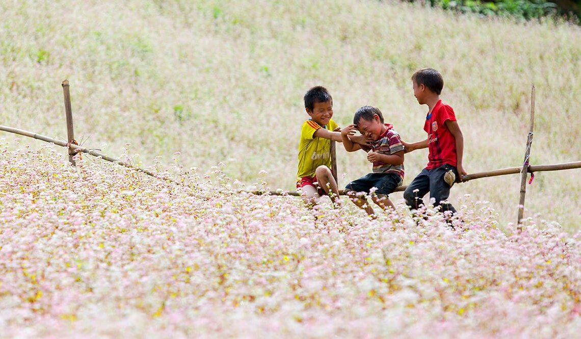 ha giang flower season 5 days