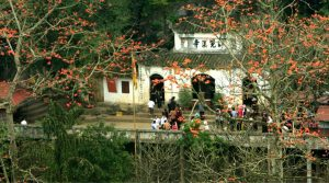 perfume pagoda hanoi tours
