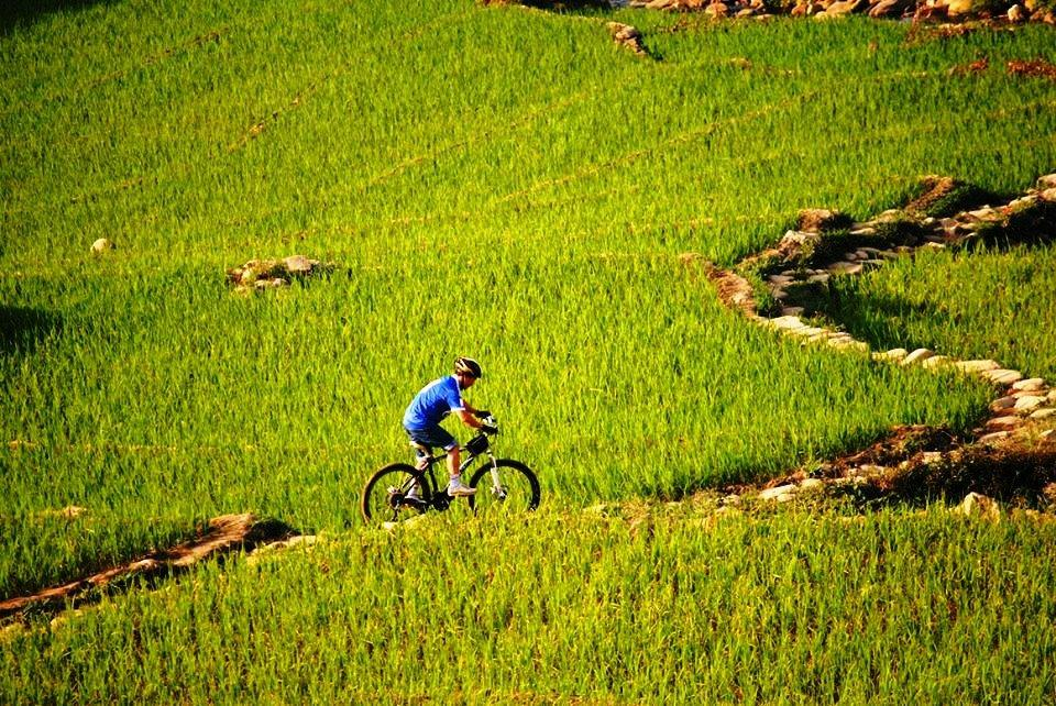Image result for biking muong hoa valley