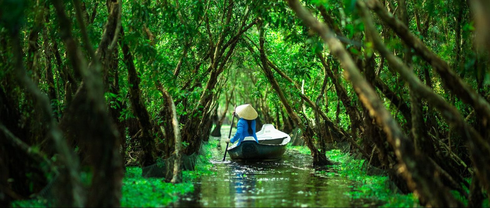 tra su forest e1541219269476 - Top 10+ Unique & Amazing Things to do in Mekong Delta, Vietnam (2021)