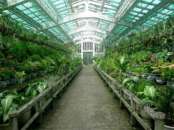 unnamed - Saigon Zoo And Botanical Gardens Price